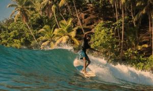 spots surf sri lanka